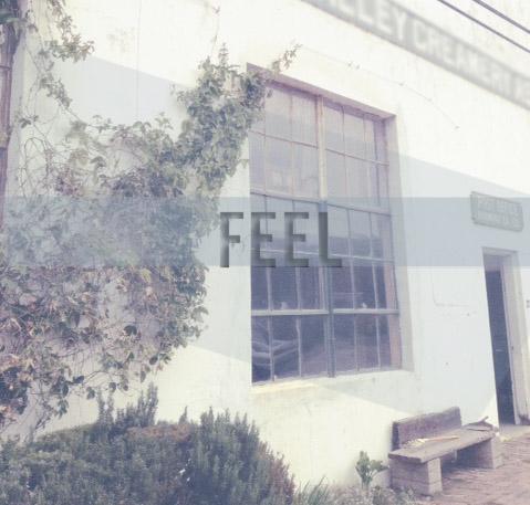Feel_final