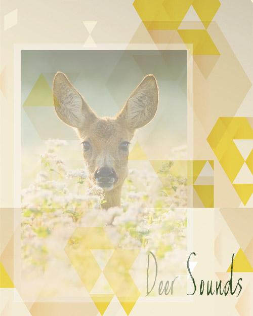 Deer Sounds