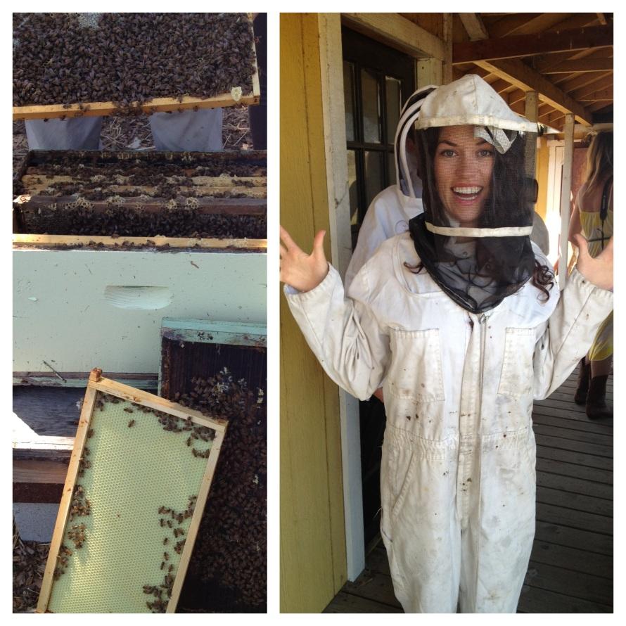 Kinfolk Honey Harvest in SF